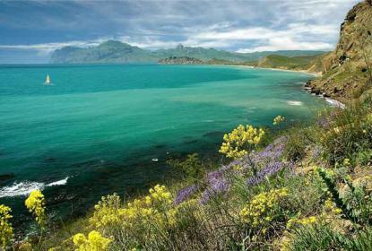 Природа и целебный воздух Крыма